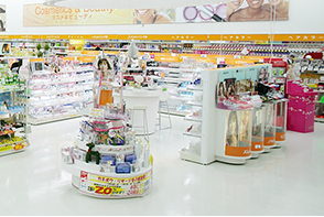An extensive lineup of cosmetics